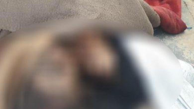 Photo of جريمة بشعة على يد الحرس الجمهوري بديرالزور بحق أحد الأهالي!